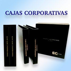 CajasCorporativas (1)
